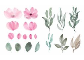 一套用于贺卡和邀请卡装饰的水彩花叶_10390271