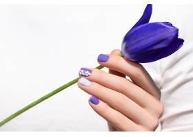 紫色指甲设计女性手持郁金香花手持紫色_9131793