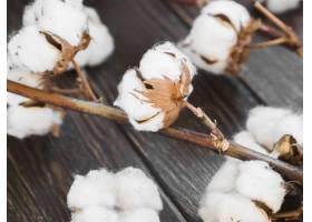 木质背景上的棉花插画_6930186