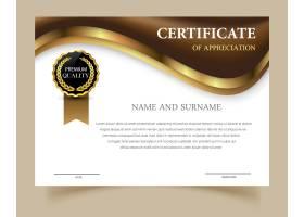 设计精美的证书模板_1168930