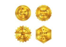 白色背景上孤立的金色金属徽章最好的质量_10602102