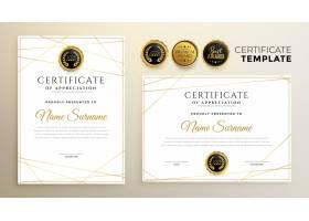 带有金线图案的时尚白色证书模板_12071043