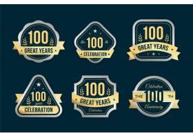 100周年纪念徽章收藏_11241587