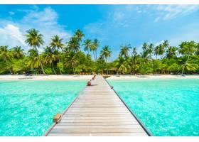 风景热带度假棕榈树之夏_104462701