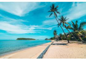 美丽的热带海滩大海和沙滩蓝天白云上有_418822701