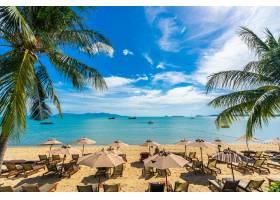美丽的热带海滩大海和海洋椰子树伞和_517515401