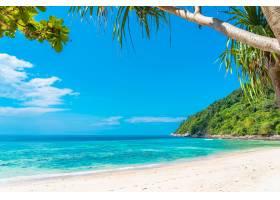 美丽的热带海滩大海椰子和其他树木环绕着_1140896101
