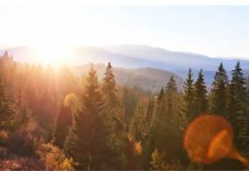 美丽的秋日早晨在欧洲喀尔巴底山脉的森林_1051467901