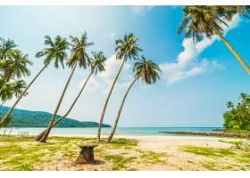 美丽的热带海滩和大海_412314401