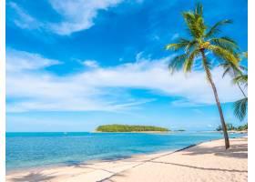 美丽的热带海滩和大海有椰子树_418822301