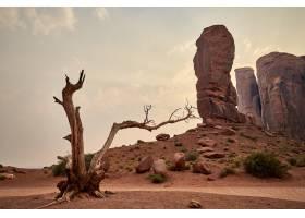 美国犹他州布莱斯峡谷国家公园台地景观美景_1300638901