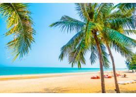 海滩上美丽的棕榈树_381668101
