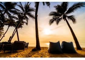 海滩和海边美丽的椰子树_366048401