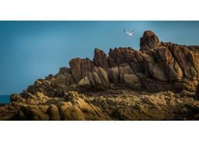 海边壮丽的岩石悬崖和飞翔的海鸟的美丽景色_918439501