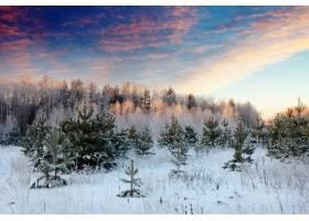 日出中的冬季景观_147393201