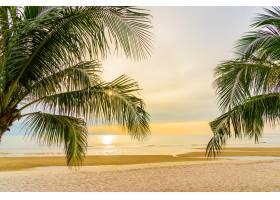 日出时分美丽的棕榈树海滨度假_561458601