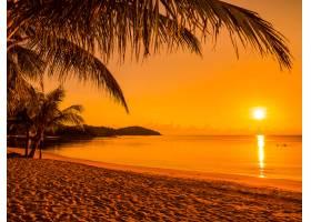 日出时分美丽的热带海滩大海和椰子棕榈树_353187601
