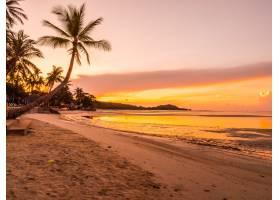 日出时分美丽的热带海滩大海和椰子棕榈树_418819501