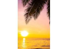 日落或日出时海面上的美丽风景有椰子树_1194187601