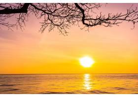 日落或日出时海面上的美丽风景有椰子树_1194187801