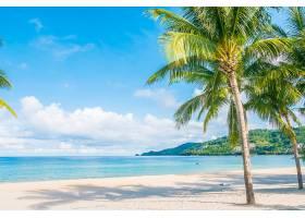 热带海滩_350116801