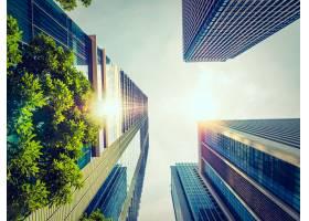 城市周围有建筑和建筑的美丽摩天大楼_371784201