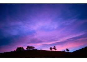 夕阳天空下令人着迷的树木剪影_1290876301
