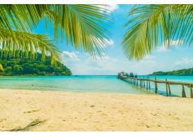 天堂岛上美丽的热带海滩和海边有椰子树_366175901