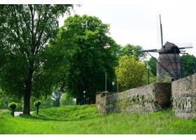 公园里一辆被草地和树木包围的旧风车的美丽_1323585601