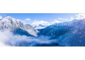 冬天白雪皑皑的阿尔卑斯山森林的美丽景色_1300579501