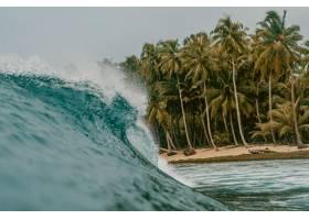 印度尼西亚明打威群岛的巨浪和棕榈树_1154077501