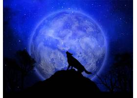3D万圣节背景狼对着月亮嚎叫_316589201