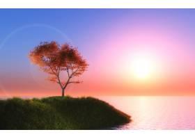 3D枫树衬托着夕阳的天空_449873601