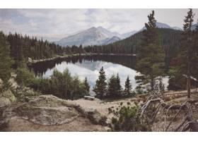 一个被树木包围的大池塘的广角镜头背景是_784873101