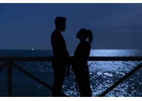 一对恩爱的夫妇互相凝视的黑色剪影_544945201
