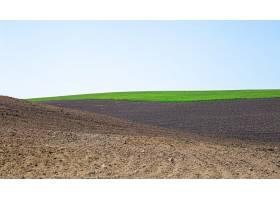 乌克兰美丽的黑土田农业乡村景观_949545801