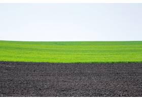 乌克兰美丽的黑土田农业乡村景观_949547301