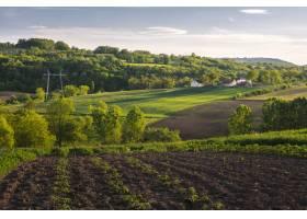 乡村绿地的美丽水平镜头有灌木丛树木和_1306164301