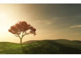 乡村里美丽的树_85466301