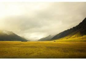 美丽的金色田野令人惊叹的多云_7630355