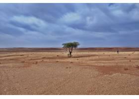 白天在令人叹为观止的多云天空下沙漠地_9076515