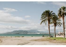 热带沙滩上棕榈树的美丽景色_13060792