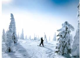 滑雪板上的人回头看着被树木包围的雪地表面_7899971