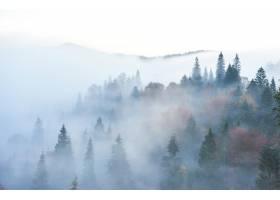 清晨仙女日出在山林风光中_10514713