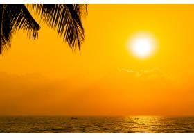 日落或日出时天空中美丽的剪影椰子树近海海_4326213