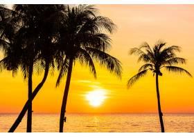 日落或日出时海面上的美丽风景有椰子树_11941867