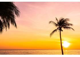 日落或日出时海面上的美丽风景有椰子树_11941869