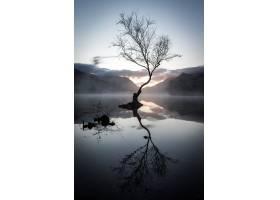 日落时分一棵无叶树在群山环抱的湖面上倒_11678263