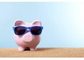 戴蓝色太阳镜的存钱罐_859336