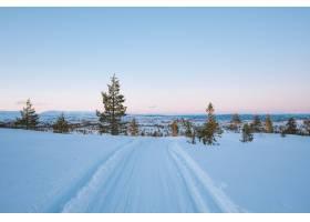 挪威有很多绿树的雪地的美丽风景_12177235